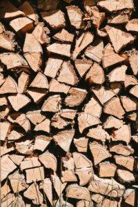 bamboo versus wood