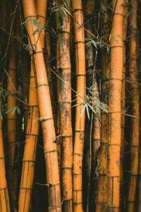 melamin geschirr bambus