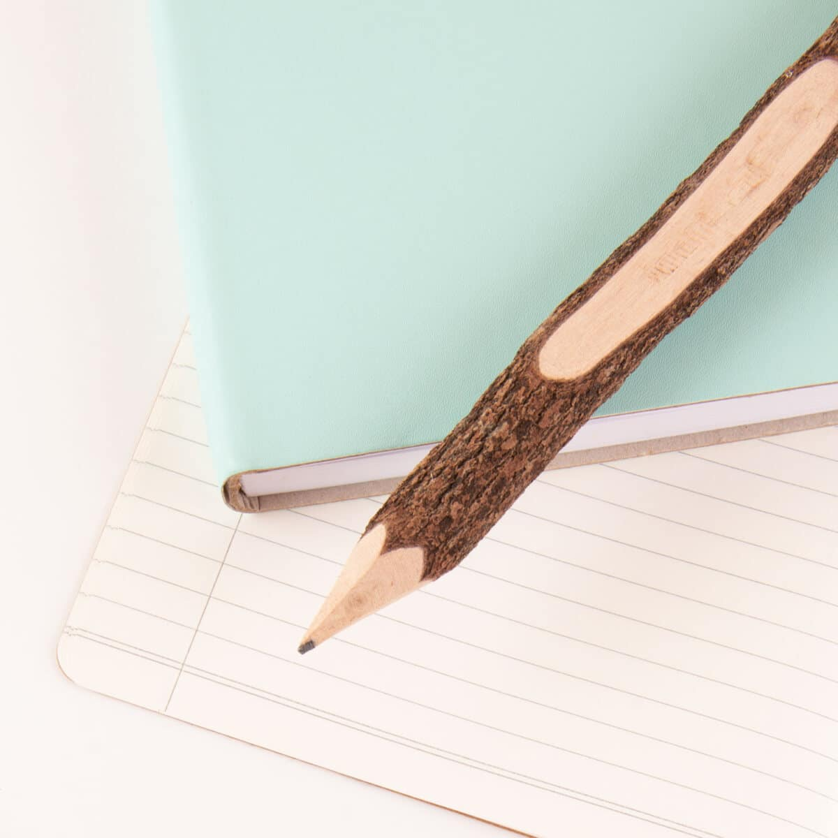 schrijven tekenen schetsen